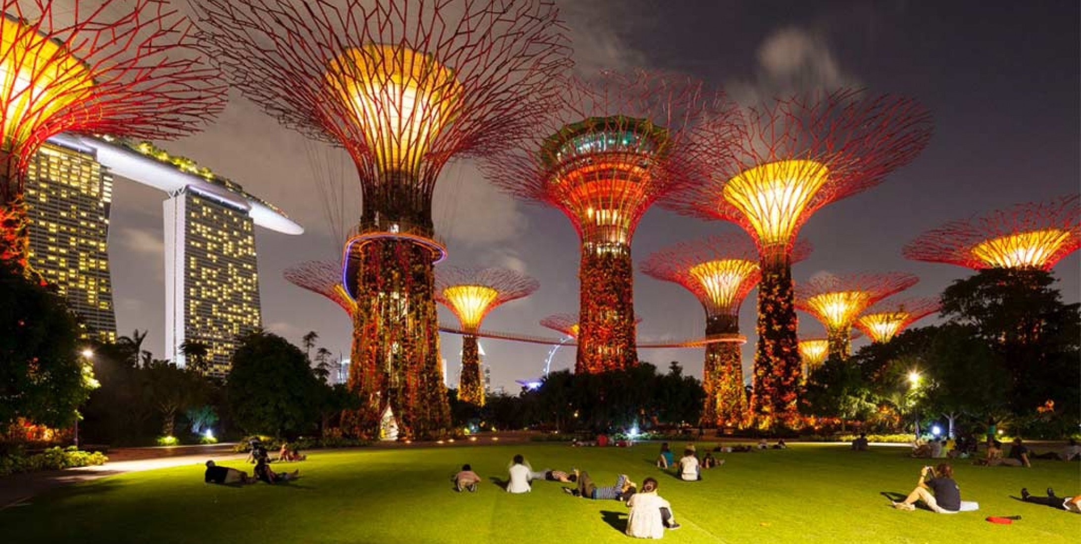 Gardens by the Bay - Singapore | Anolis LED Lighting